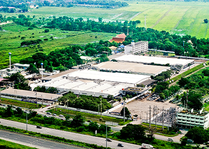 Photo of Ayutthaya plant